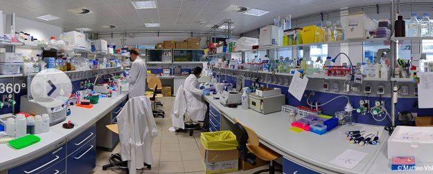 Biology unitn