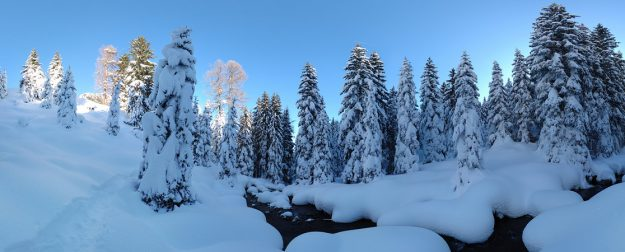 Neve in Val Calamento